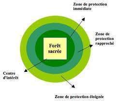 images 41 - Le stratégie verte de la direction administrative et financière